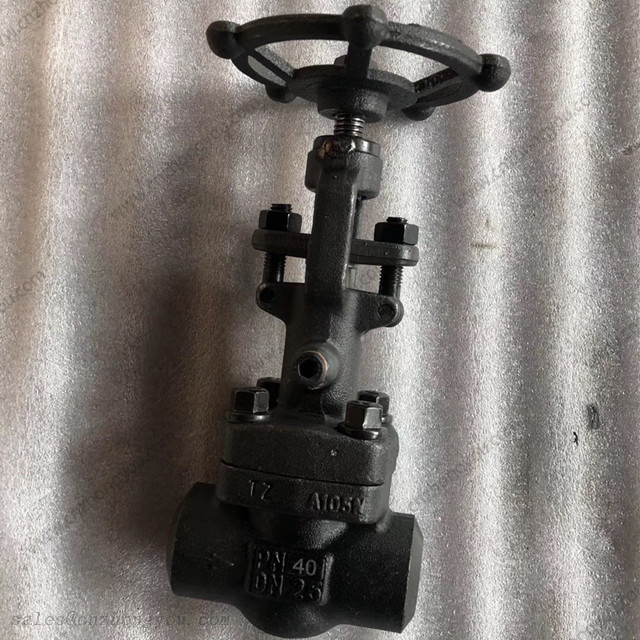 Vacuum Gate Valve, DN25 PN40, ASTM A105N Body, 13Cr Trim, BW Ends